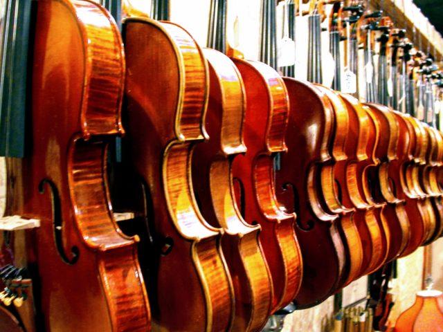 Violins, Coolpix 995
